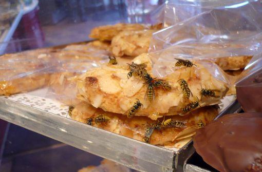 Mangelnde Hygiene - hunderte Lebensmittelbetriebe geschlossen
