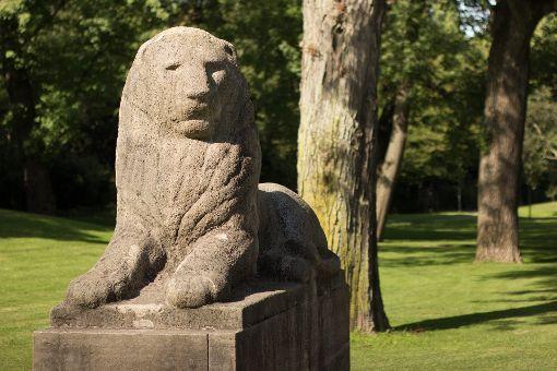 Das gleiche Motiv mit unterschiedlicher Wirkung. Hier wurde der Löwe mit einer geöffneten Blende (f1.8) aufgenommen. Der Hintergrund ist deshalb unscharf.  Foto: Raimund Förnzler