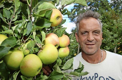 Apfelernte so früh wie selten