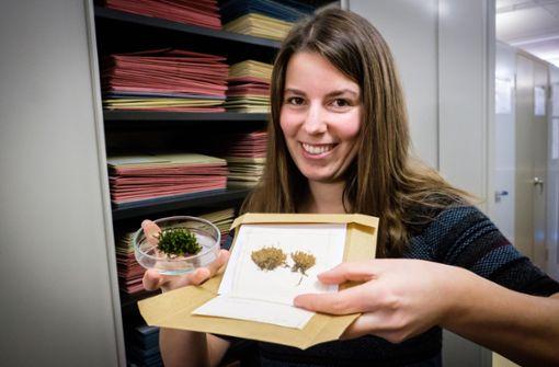 Heute ein Porträt über Sonja Thielen, die erforscht, wie gut Moose gegen Feinstaub wirken.  Foto: Lichtgut/Achim Zweygarth