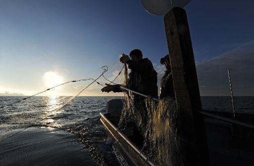 Angler schwimmt stundenlang im Meer
