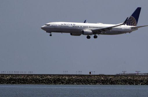 Auf einem Flug der United Airlines ist ein Hundewelpe in einem Gepäckfach gestorben (Symbolbild). Foto: AP