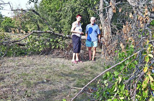 Peter Hölzle und seine Frau  fürchten, dass  DRK und Siedlungswerk die Wiese  dem Baugrundstück zuschlagen wollen. Foto: Eva Funke