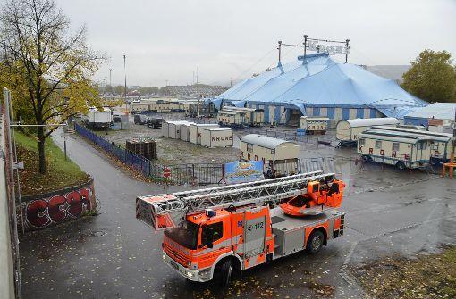 Die Feuerwehr musste nach eigenen Angaben mit sechs Mann und einer Drehleiter anrücken, um den Vogel wieder einzufangen. Foto: Andreas Rosar Fotoagentur-Stuttgart