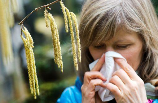 Zahl der Allergiker in Stuttgart nimmt rasant zu