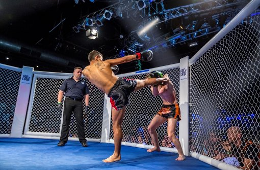 mixed martial arts stuttgart