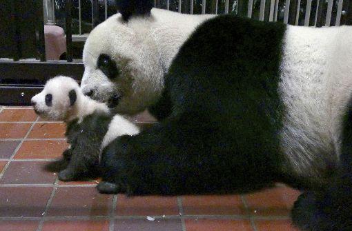 Zoo veröffentlicht neue Bilder