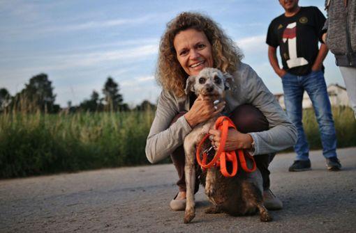 In Wasserrohr stecken geblieben – Feuerwehr rettet Hund