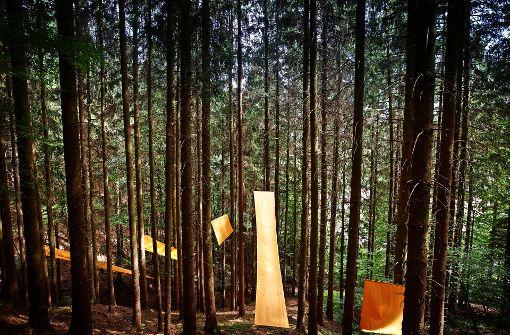 Wunderwerke am Wegesrand mitten im Wald