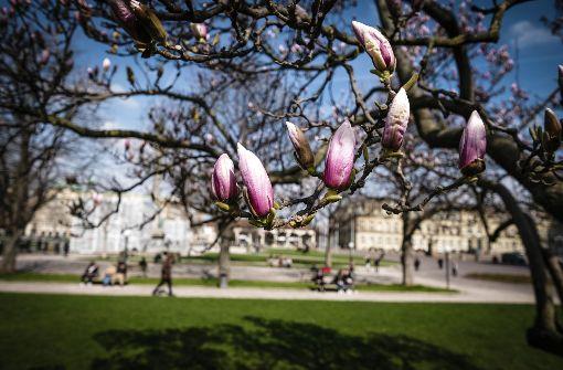 Sonnige Aussichten für Stuttgart