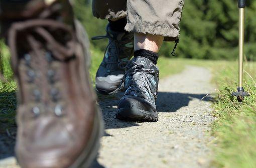 Zwei Wanderer sind in den österreichischen Bergen ums Leben gekommen (Symbolfoto). Foto: dpa