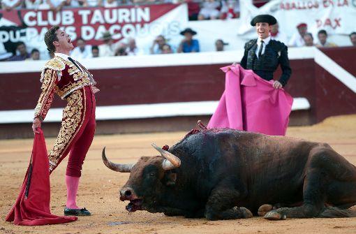 Der Matador Luque und seine rosa Strümpfe