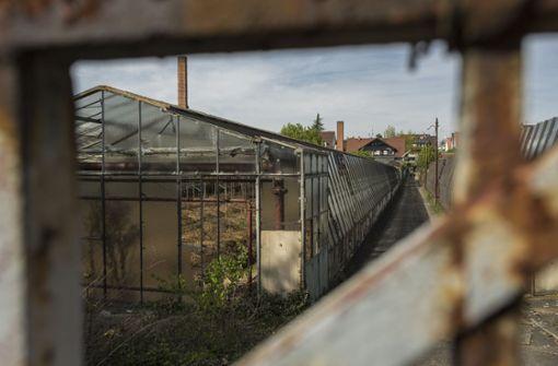 Asbestsanierung kostet drei Millionen Euro