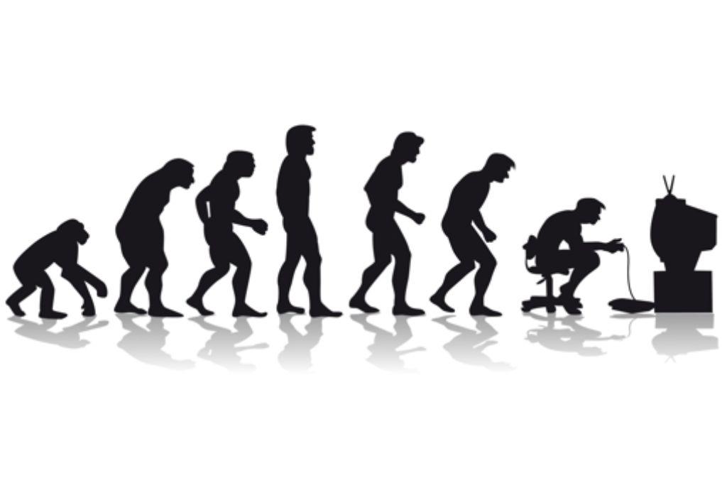 Von Affe Zu Mensch