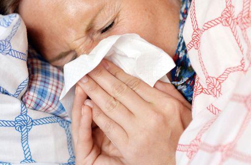 InfluenzaB verursacht  viele  Grippefälle