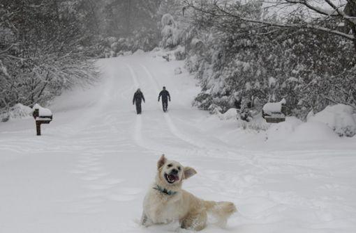 Vier bezaubernde Winterwanderungen