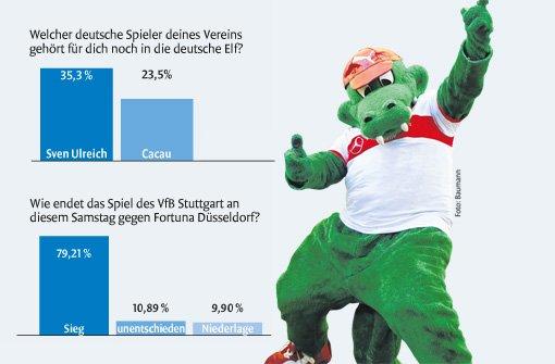 Die VfB-Fan-Box vor dem 3. Spieltag