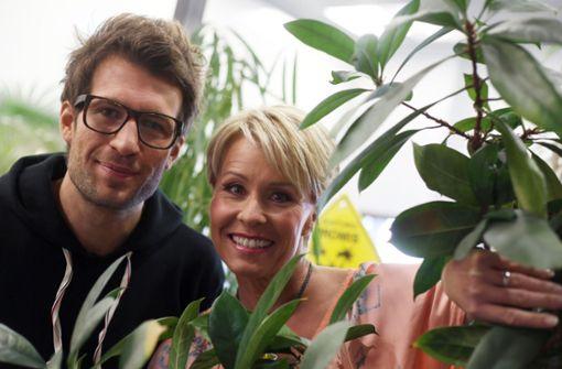 Fünf Gründe, warum das RTL-Dschungelcamp keine Zukunft hat