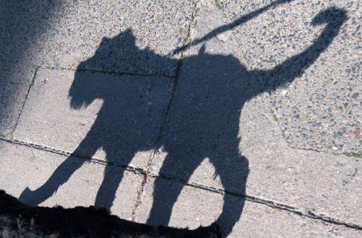 Vor einem Supermarkt im Kreis Esslingen hat ein Mann seinem Hund befohlen, eine Frau zu beißen (Symbolfoto). Foto: dpa