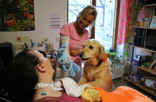 """Lucky"" zaubert Patienten  ein Lächeln ins Gesicht"