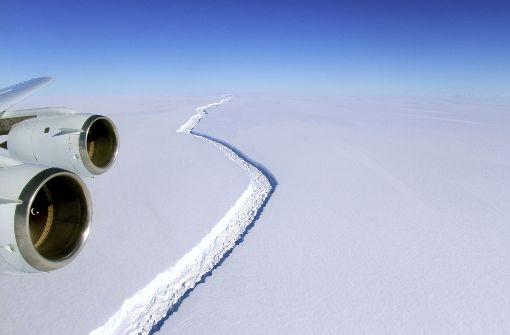 Gigantischer Eisberg treibt im Meer