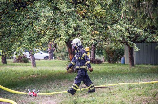 Innerhalb kürzester Zeit brannte der Baum lichterloh. Foto: SDMG