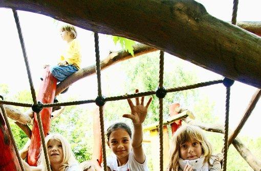 Klettergerüst Für Ziegen Bauen : Klettergerüst für ziegen bauen: kletterkombinationen und