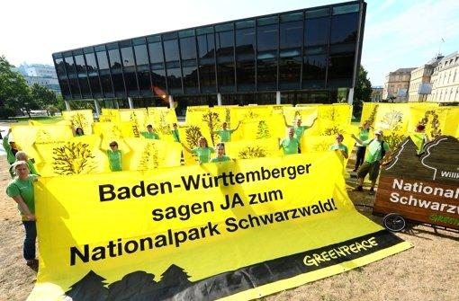Demonstration vor dem Landtag: Die Umweltschutzorganisation Greenpeace ist vom Projekt der Landesregierung überzeugt. Foto: dpa