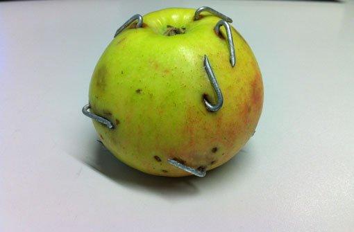 Legt ein Pferdehasser diese mit Nägel gespickten Äpfel in Fellbach aus? Foto: Polizei Waiblingen