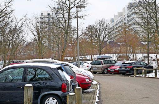 Ein freier Parkplatz ist selten