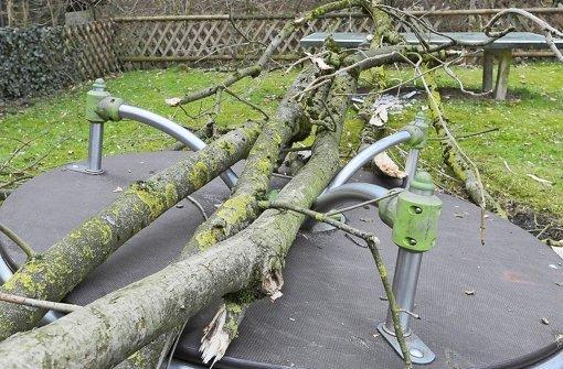 Baum kracht auf Spielplatz