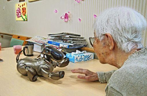 Braver Hund: Japans Rentner bekommen maschinelle Gefährten an ihre Seite. Foto: Gottschalk
