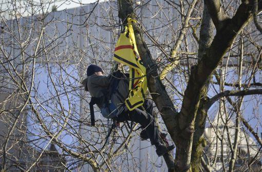 Der Kletterer war am Dienstagmorgen auf den etwa zehn Meter hohen Baum gestiegen. Foto: Andreas Rosar