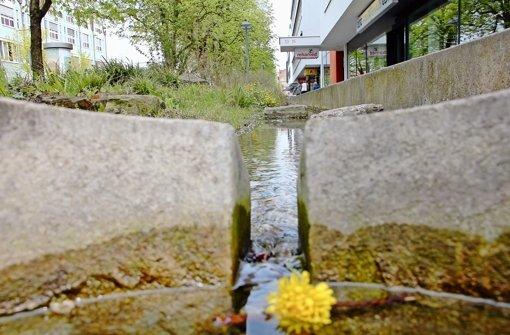 Mehr Wasser soll   die Sache     wieder in Fluss bringen