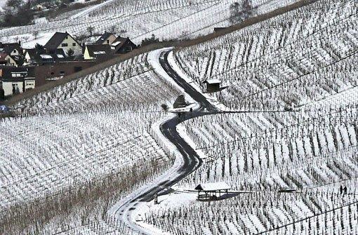 Der Schnee verwandelt die Weinberge rund um Stuttgart in ein geometrisches Muster aus schwarz und weiß. Foto: Leserfotograf bdslucky48