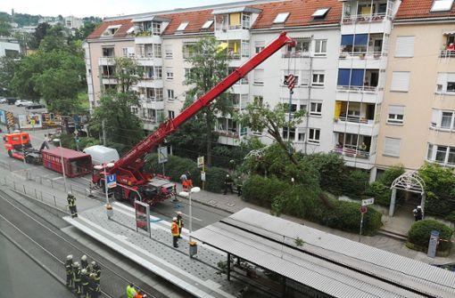 Zur Bergung des Baumes musste die Feuerwehr einen Kran einsetzen. Foto: Andreas Rosar