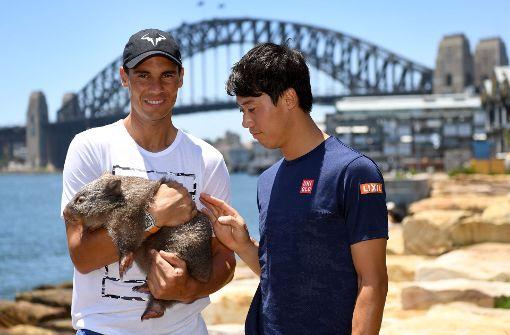 Tennis-Stars turteln mit Wombat