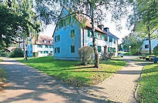 Die Keltersiedlung in Zuffenhausen soll im Zuge einer Nachverdichtung umgebaut werden. Foto: Mierendorf