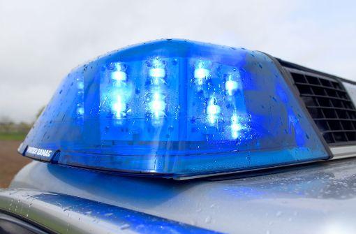 Polizei nimmt Handtaschenräuber fest