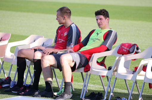 Nicht nur Badstuber (links) und Gomez haben Bayern-Vergangenheit. Foto: Pressefoto Baumann