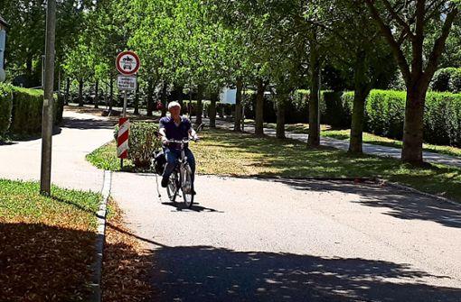 An dieser Baumallee entlang sollen die Gleise führen, dann gibt es im Hornbergweg nicht nur Radler, sondern auch die Stadtbahn. Foto: her