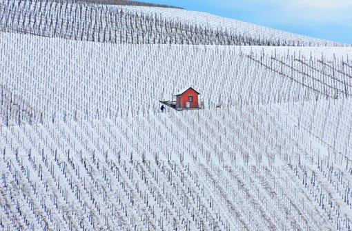 Der Schnee verwandelt die Weinberge rund um Stuttgart in ein geometrisches Muster aus schwarz und weiß. Foto: Leserfotograf deniz