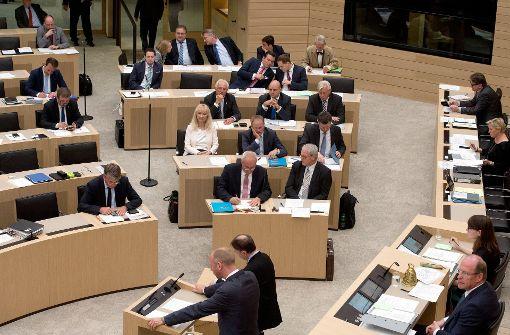AfD-Fraktion verlässt Plenum