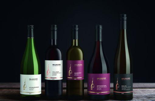 Fellbacher Weingärtner kleiden sich neu ein