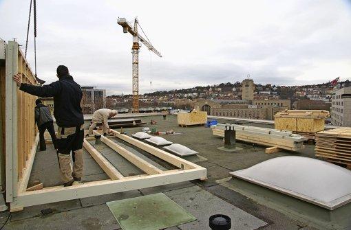 Neues Taubenhaus über den Dächern