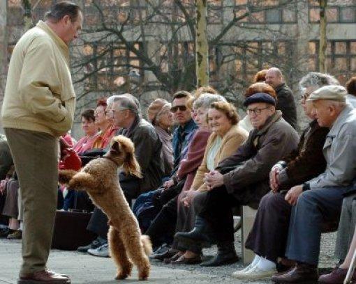 bPlus: Pensionsfonds/b. Um die Altersversorgung der Beamten zu sichern und die drohende Pensionslawine abzufedern, richtet das Land auf sein Betreiben einen Pensionsfonds ein.  Foto: AP