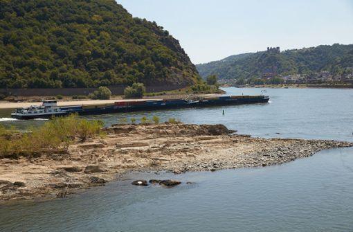 Rheinwasser erreicht Temperaturen von mehr als 25 Grad
