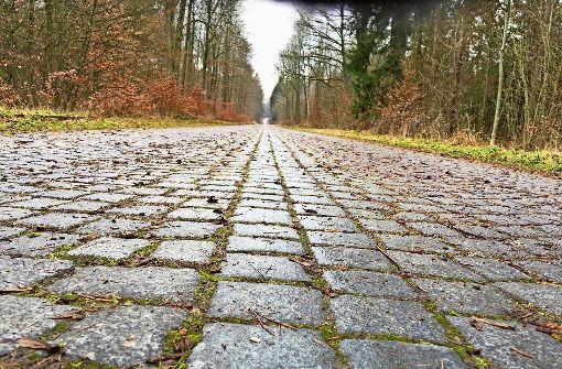 Die Panzerstraße ist eine beliebte Spazier- und Radstrecke. Foto: Archiv Decksmann