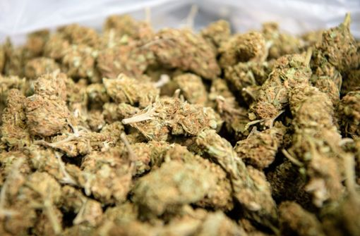 Die Polizei beschlagnahmte 200 Gramm Marihuana (Symbolbild). Foto: dpa
