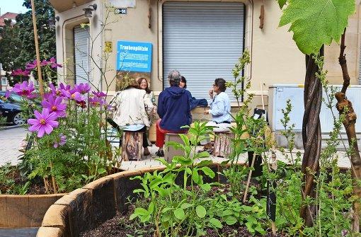 urban gardening neues zuhause an der stra enecke stuttgart west stuttgarter nachrichten. Black Bedroom Furniture Sets. Home Design Ideas